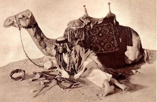 T.E. Lawrence and his camel, Jedha (a spendid beast). s